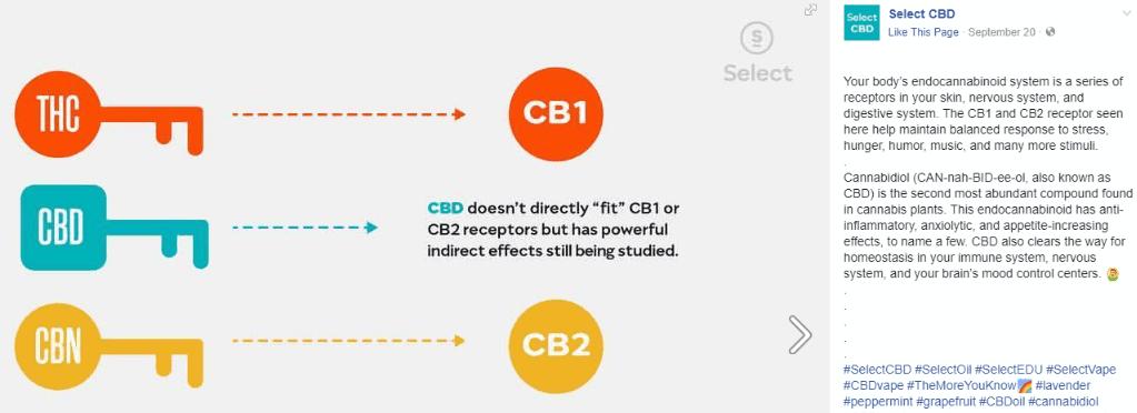 select cbd disposable pen endocannabinoid system
