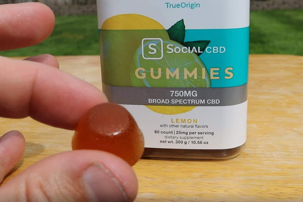 social cbd gummies lemon review