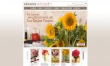 Organic Bouquet Reviews 2017