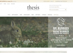 Thesis Beauty Reviews 2017